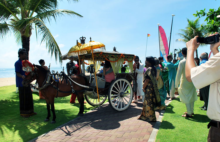 Specially curated of our Indian Wedding in Bali